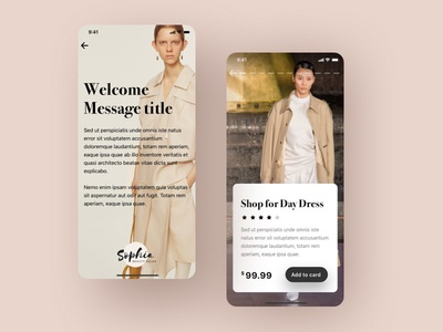 Web version for the sale of clothing