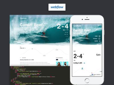 Dann Petty + XD + Webflow = 🤙 🏄🏻  landing page xd adobe clean surf school code surf dann petty webflow