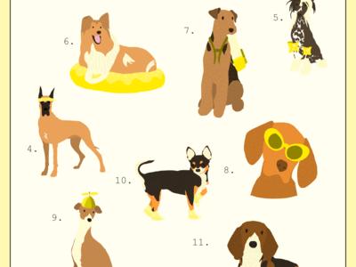 Summer Pups