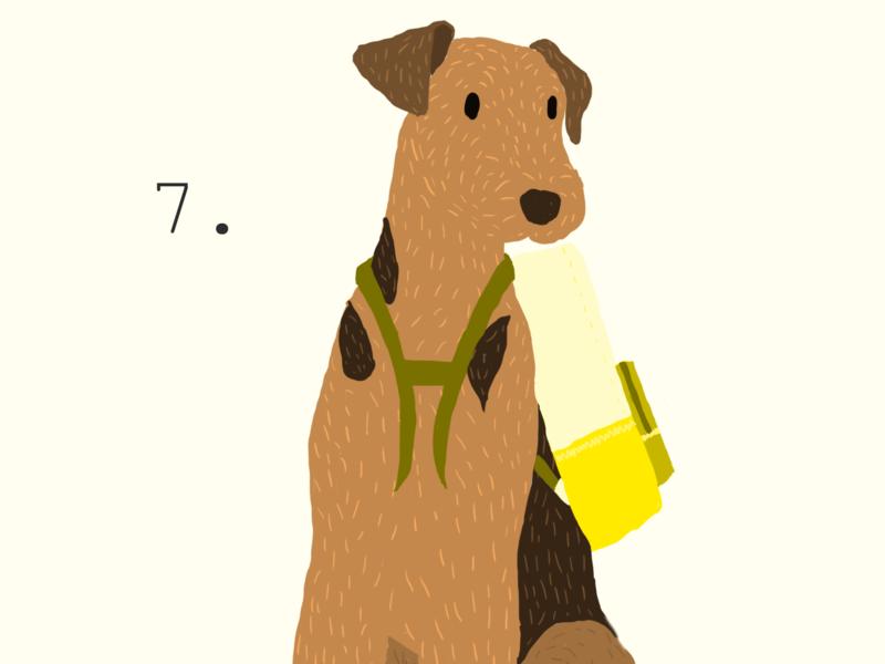 Airedale Adventurer logo dogs minimal branding icon design illustration flat
