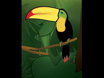 Toucan & Gradients Exercise adobe illustrator illustration bird toucan nature