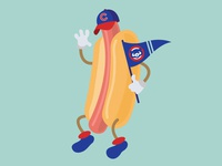 Wrigleyville Chicago dog