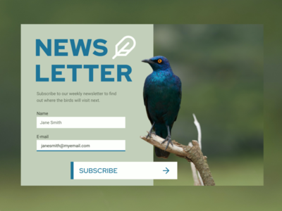 Daily UI: Subscribe newsletter design newsletter subscribe form subscribe popup design web ui design ui daily ui dailyui