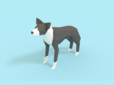 Border Collie render 3d blender low poly sheep dog border collie dog