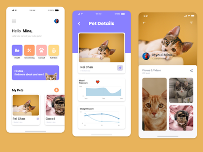 Pet Adoption App mobile design mobile app mobile ui petcare pets