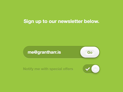 Newsletter Form ndc2014 form user interface experience ui ux toggle input