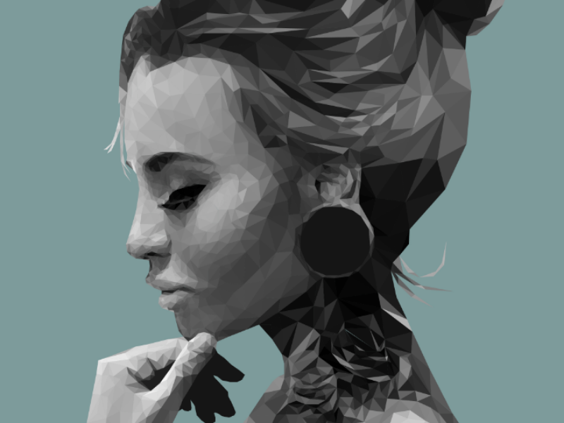 Low poly portrait low poly illustrator