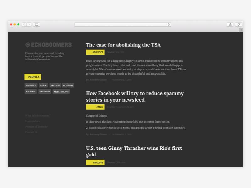 Echoboomers Blog Concept website blog web design