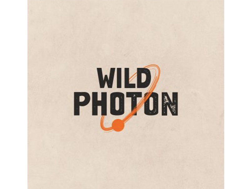 Wild Photon custom logo design best logo designers toronto graphic design logo design branding best graphic designers toronto creative agency toronto graphic design toronto toronto a nerds world