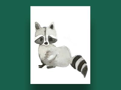 raccoon raccoon cards ui cards children illustration children animals animal digital drawing forest forest animals watercolour watercolor digital illustration digital art illustration drawing