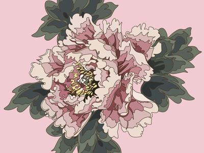 pink n.1