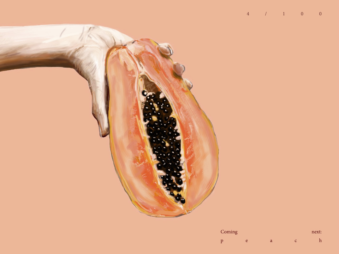 Papaya papaya fruit digital drawing contrast design digital illustration vector illustration drawing digital art