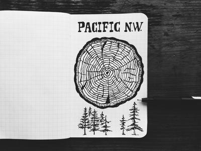 Pacific Northwest - Brainstorming