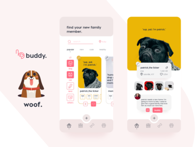 buddy.find your new family member. application UI/UX