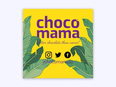 Chocomama Plant