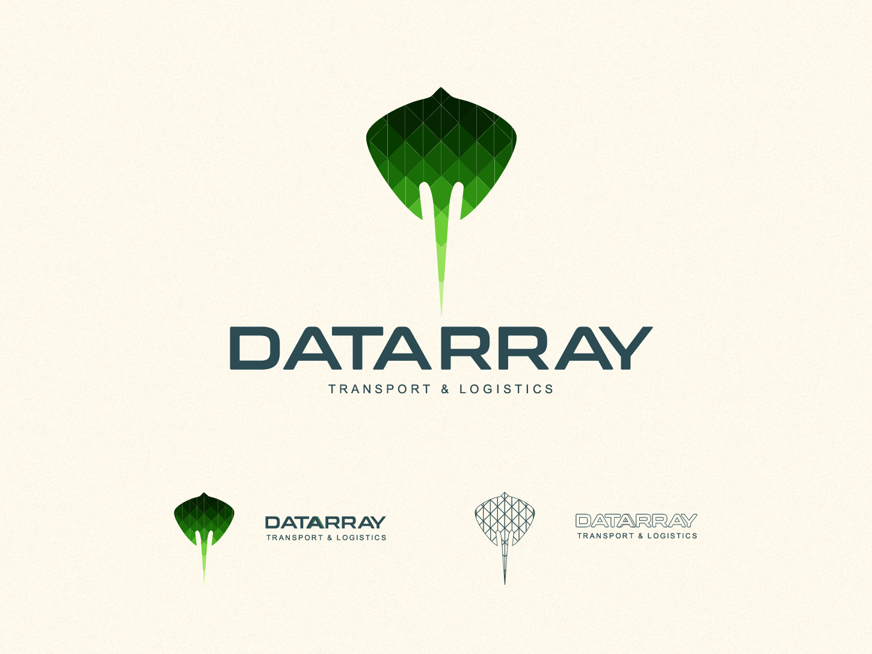 Datarray logo Display