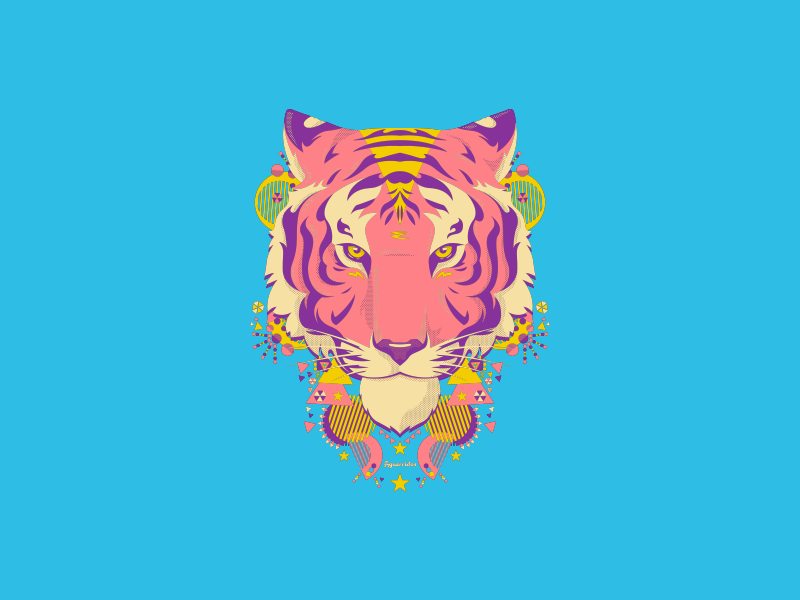 Aguerridos 4 aguerridos tiger illustration