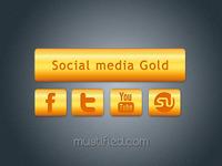 Social Media Gold Icons