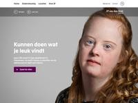 JP van den Bent stichting - Story