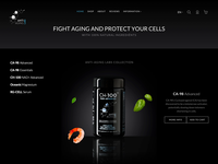 Elegant animation homepage