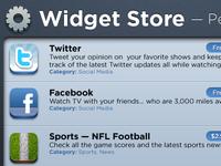 Widget Store