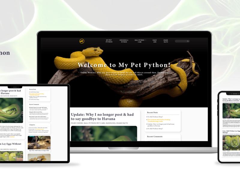 Python Blogging Website Design blogging website adobe ilustrator front-end development website design