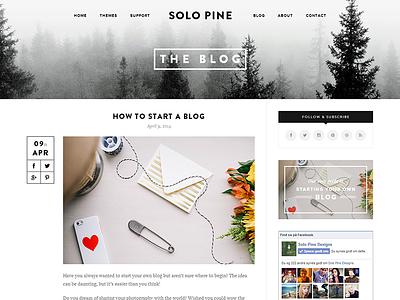 SoloPine Blog Post View theme themes wordpress blog post