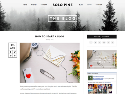 SoloPine Blog Post View