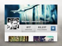 Instwdgt instagram widget ui ux button profile photos images subtle