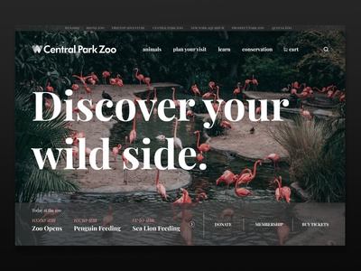 Central Park Zoo Page