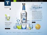 Website design for tequila project