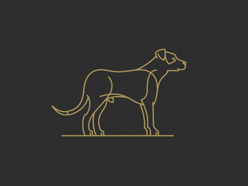003 Hogan gold linework illustration hogan dog