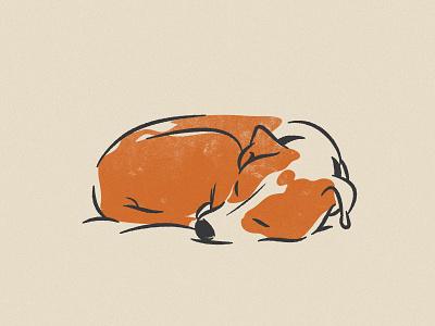 005 Hogan texture brush hogan illustration dog