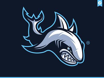 Shark Mascot Illustration graphiste laureaux didier gaming esport logo design branding illustration shark logo shark mascot