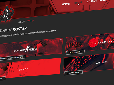 Platinium Redesign - Team Page
