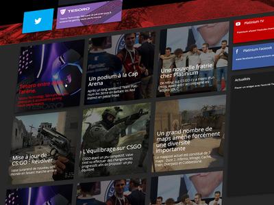 Platinium Redesign - Home Page UI