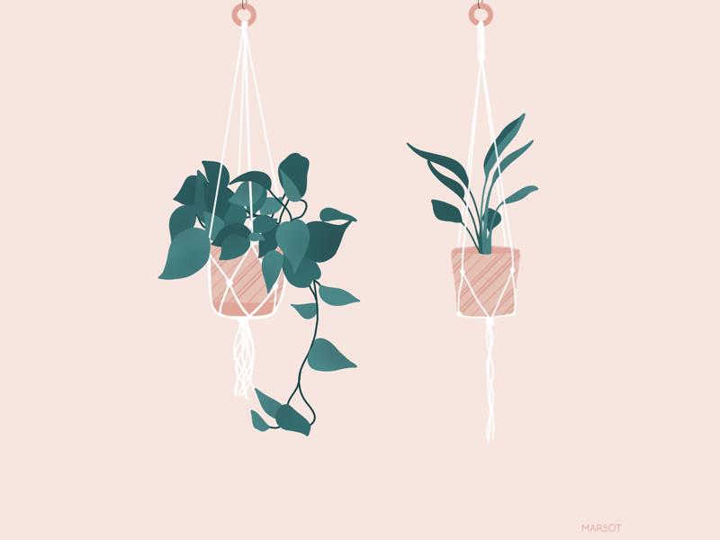 Macrame & Plants illustration art macrame flower plant illustration drawing procreate art procreate design art direction art