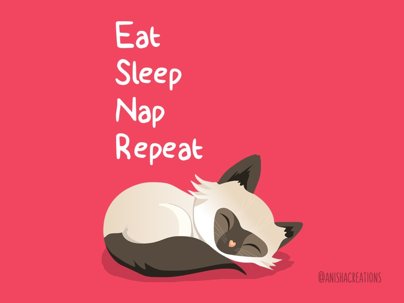 Cat Goals chill relax nap lazy sleep motivation humor vector character kitty illustration kitty cats animals illustration design cartoons kawaii cute art funny cute