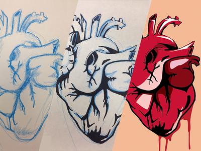 Heart Illustration Process