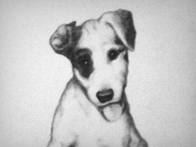 Sir Loin graphite pencil drawing dog puppy