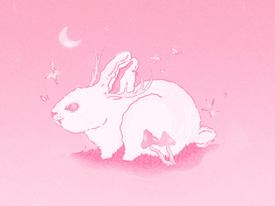 Magical Bunny | Animated Illustration in pink branding motion graphics graphic design illustrated cute animal animal drawing textures design atmosphere bunny animated illustration animation pink illustration magical magic