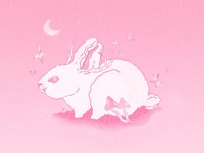 bunny666.mp4