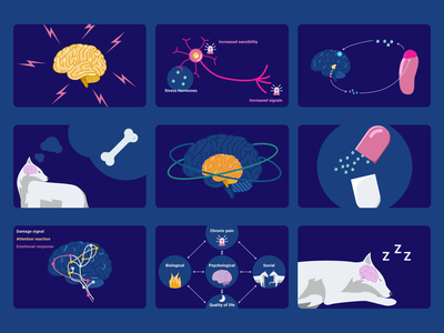 Brain & Science illustrations | Blog content medical blog ui design ui illustration scientific brain science