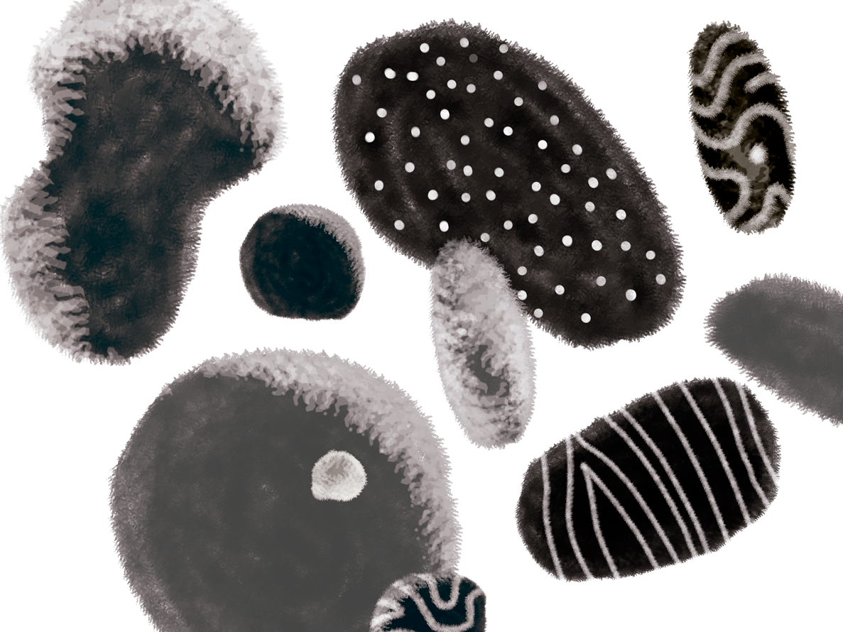 Bacterial life forms abstract art generative brushes photoshop life black and white shapes pattern organic abstract bacterial