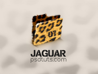 [2008] Jaguar Folder Icon