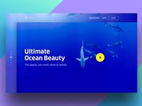 Ocean Beauty-WIP