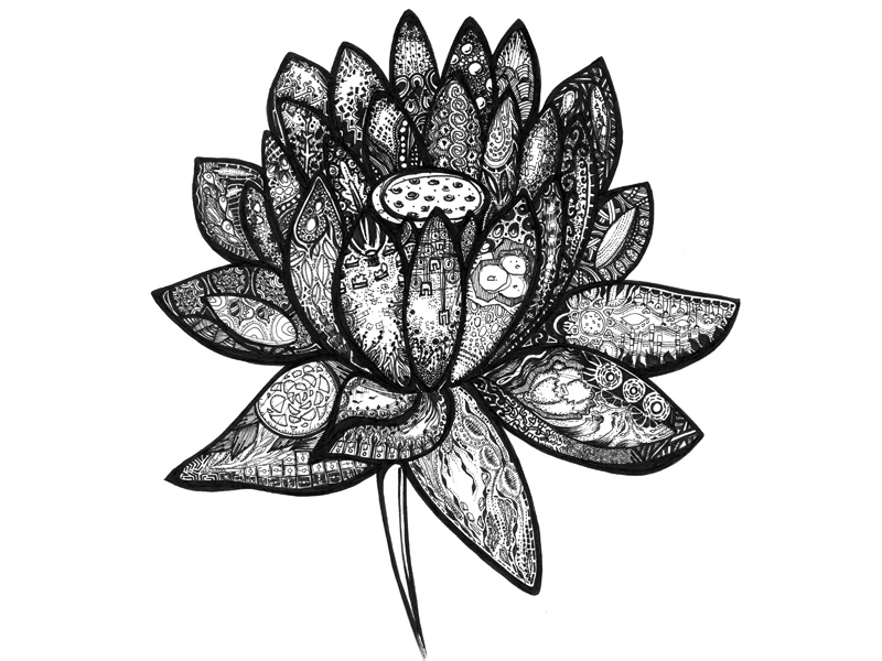 Black White Lotus Flower Ink Illustration Abstract