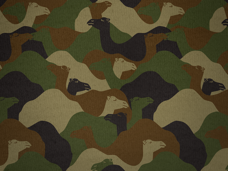 Camo camouflage camels pattern