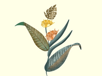 Simple Botanical illustration inspired by nature | iPad Art