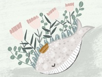 Whale in Procreate 5 | iPad Pro